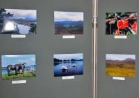 """Foto konkurss - """"Īrijas nagla"""""""