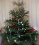Kur likt Ziemassvētku eglīti?