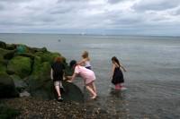 Slēgtas septiņas pludmales Korkas grāfistē