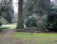 Ir atrasta Kārļa Pētersona kapa vieta Hamburgā