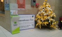 <em>Remembrance Tree</em> - īpaša Ziemassvētku laika tradīcija