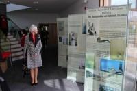 Īri iepazīstas ar latviešu ieguldījumu Īrijas neatkarības cīņās