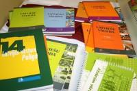 Aptauja: Vai atbalstāt ideju par latviešu valodas mācīšanu Īrijas vidusskolās?