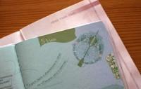 Ar 1. februāri Īrijā vīzas Latvijas vārdā izsniegs Lietuva