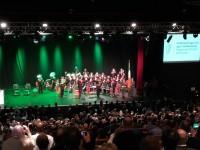 Svinīgā ceremonijā Īrijas pilsonību saņem 113 ieceļotāji no Latvijas