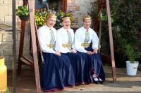 Dziesmu un deju svētku tradīcijas uzturēšanai diasporā atvēl 70000 eiro