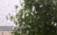 Šodien Zaļajā salā plosās negaisi (papildināts)