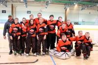 <em>Inline Hockey Ireland</em> pieņem lēmumu par 2019./2020. gada sezonu