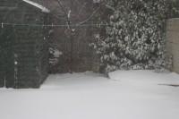 Brīvdienu naktīs sola krusu un sniegu